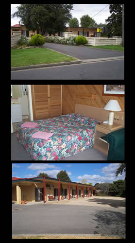 Ace Swan Motel - Accommodation Noosa