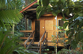 Cape Trib Beach House - Accommodation Noosa