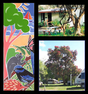 Bushland Cabins - Accommodation Noosa