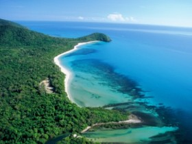 Cape Tribulation Camping - Accommodation Noosa
