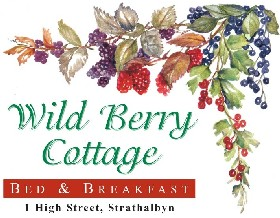 Wild Berry Cottage - Accommodation Noosa