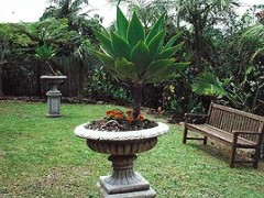 Bangalow Retreat - Accommodation Noosa