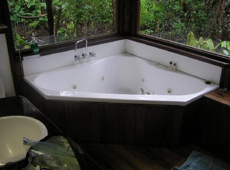 The Canopy Rainforest Tree Houses and Wildlife Sanctuary - Accommodation Noosa