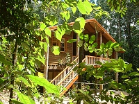 Rivers Edge Rainforest Retreat - Accommodation Noosa