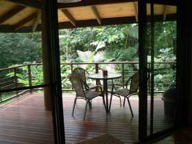 Cape Trib Exotic Fruit Farm Bed and Breakfast - Accommodation Noosa