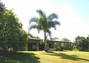 Daintree Mountain View Retreat and Vanilla Beans - Accommodation Noosa