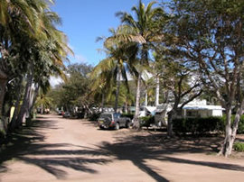 Alva Beach Tourist Park - Accommodation Noosa