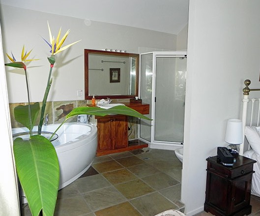 Airlie Waterfront Bed and Breakfast - Accommodation Noosa