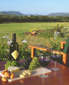 Tranquil Vale Vineyard Cottages - Accommodation Noosa