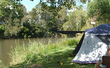 Williams River Holiday Park - Accommodation Noosa