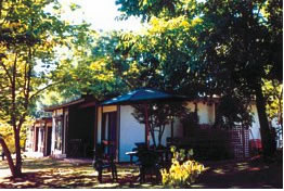 Forest Lodge - Accommodation Noosa