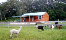 Moorallie Cottage Farm Stay - Accommodation Noosa