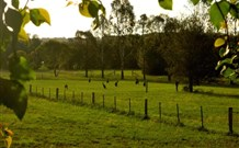Stone Cottage Mittagong - Accommodation Noosa
