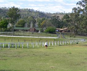 Kellarni Downs Farmstay-Scenic Rim - Accommodation Noosa