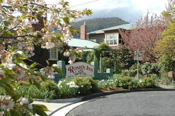 Rosie's Inn - Accommodation Noosa