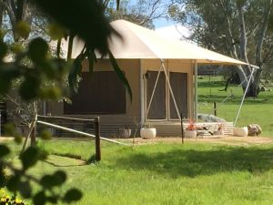 Boongarrie Luxury Tent - Accommodation Noosa