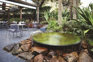 Hotel Urban St Leonards - Accommodation Noosa