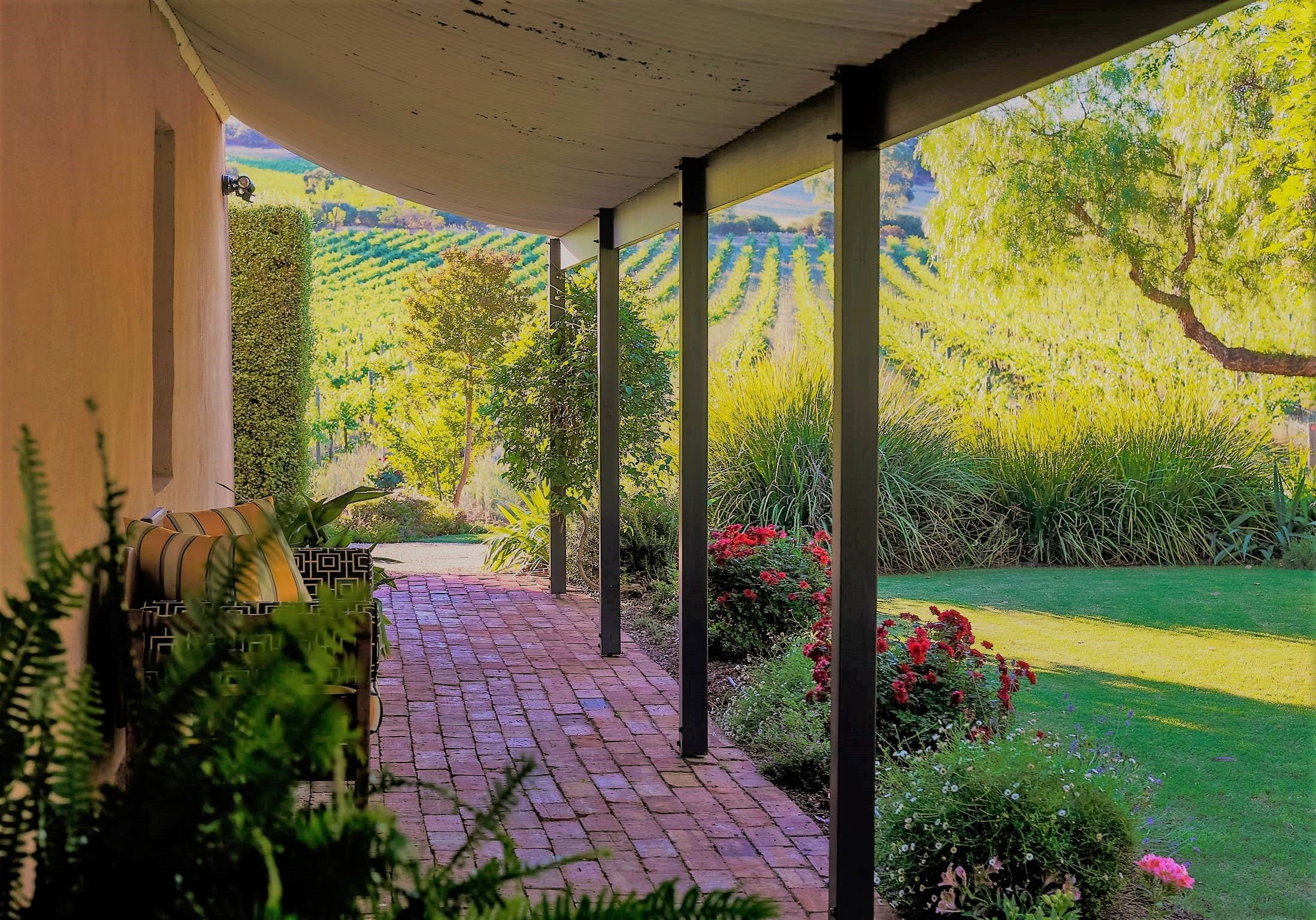 Seppeltsfield Vineyard Cottage - Accommodation Noosa