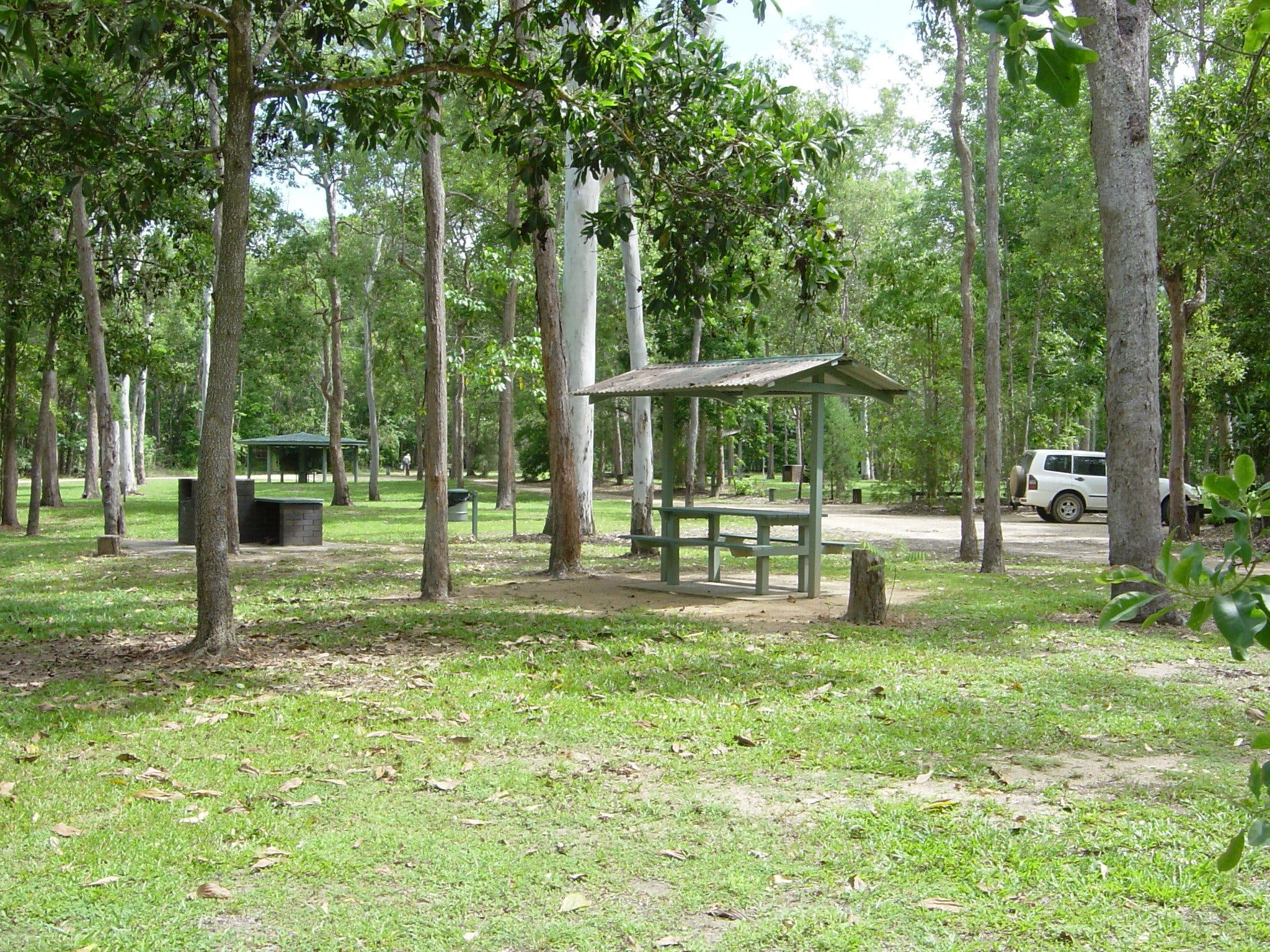 Broadwater camping area Abergowrie State Forest - Accommodation Noosa