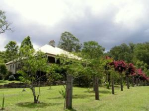 Guesthouse Mulla Villa - Accommodation Noosa