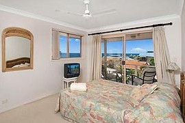 Allez Pacific Rose - Accommodation Noosa