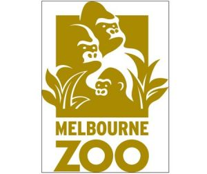 Melbourne Zoo - Accommodation Noosa