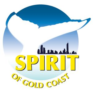 Spirit of Gold Coast Whale Watching - Accommodation Noosa