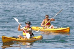 Manly Kayaks - Accommodation Noosa