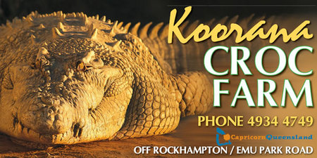Koorana Saltwater Crocodile Farm - Accommodation Noosa