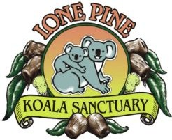Lone Pine Koala Sanctuary - Accommodation Noosa