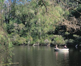 Warren National Park - Accommodation Noosa