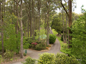 Mount Lofty Botanic Garden - Accommodation Noosa