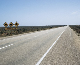 Eyre Highway - Accommodation Noosa
