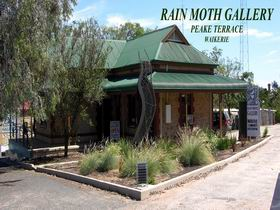Rain Moth Gallery - Accommodation Noosa