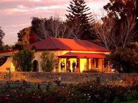 Elderton Wines - Accommodation Noosa