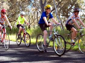 Penola Cycling Trails - Accommodation Noosa