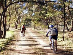 Bike About Mountain Bike Tours And Hire - Accommodation Noosa
