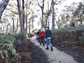 Bridport Walking Track - Accommodation Noosa