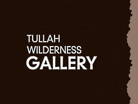 Tullah Wilderness Gallery - Accommodation Noosa