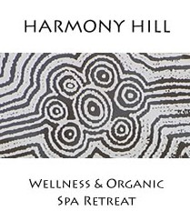 Harmony Hill Wellness and Organic Spa Retreat - Accommodation Noosa