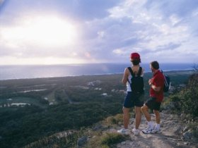Mount Coolum National Park - Accommodation Noosa