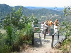 Mapleton Forest Reserve - Accommodation Noosa