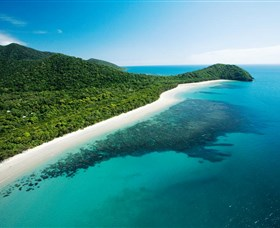 Cape Tribulation Daintree National Park - Accommodation Noosa