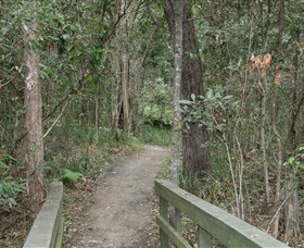 Springwood Conservation Park - Accommodation Noosa