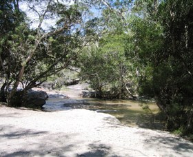 Davies Creek National Park and Dinden National Park - Accommodation Noosa