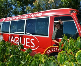 Jaques Coffee Plantation - Accommodation Noosa