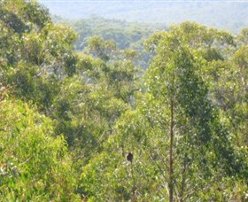 Bunyip State Park - Accommodation Noosa
