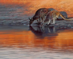 Steve Morvell Wildlife Art - Accommodation Noosa
