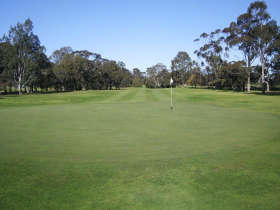 Maffra Golf Club - Accommodation Noosa