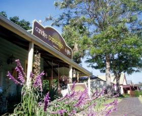 Passionfish Candles - Accommodation Noosa